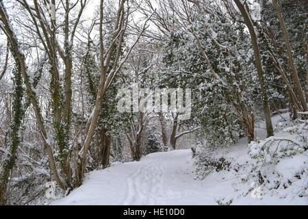 Blick auf Peter's Lane von Pinsel Hill Nature Reserve, Princes Risborough, Buckinghamshire, Großbritannien. Weg - Stockfoto