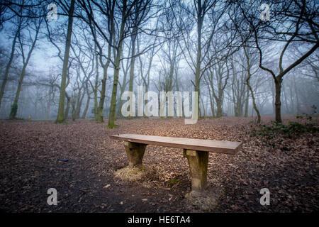 Leere Bank in den nebligen Wald in der Dämmerung - Stockfoto