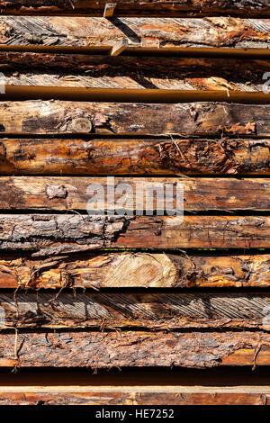 Nahaufnahme von frischen Holzbrett im Sägewerk. - Stockfoto