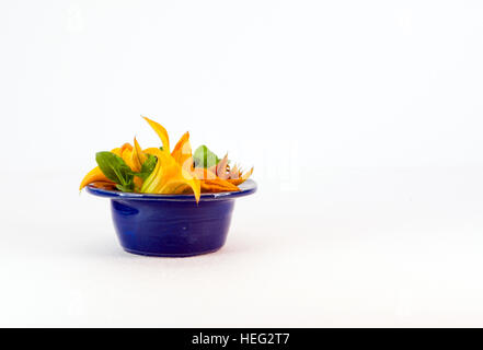 squash blumentopf stockfoto bild 61939133 alamy. Black Bedroom Furniture Sets. Home Design Ideas