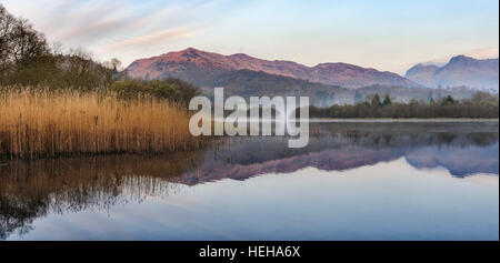 Lake Elter Water in der Nähe von Elterwater in Great Langdale Cumbria im englischen Lake District - Stockfoto