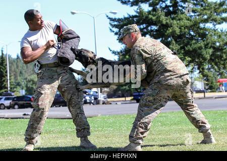 Staff Sgt Adam Serella (rechts) und Spc. Bruce Brickleff (links), beide militärischen Gebrauchshund-Handler mit - Stockfoto