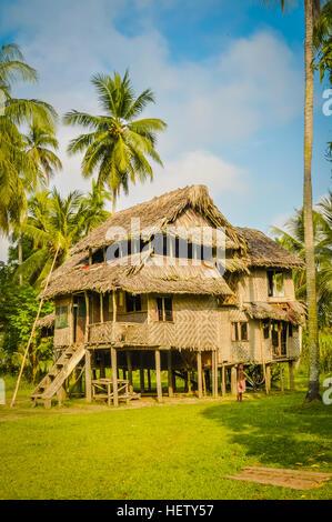 Große Einfache Haus Aus Holz Und Stroh, Umgeben Von Viel Grün In Avatip,  Sepik