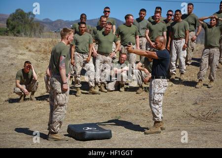 Staff Sgt Hector Sanchez (rechts), nichttödliche Waffen Instruktor, 1. Law Enforcement Bataillon, sprüht eine Marine - Stockfoto