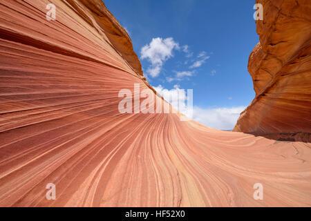 Red Wave und blauer Himmel - Regelklappe aus bunten Sandstein-Fels-DGM, gegen blauen Himmel, bei The Wave in North - Stockfoto