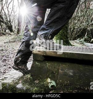 Ein Wanderer klettert auf einen Steg als die niedrigen Winter Sonnenstrahlen durch Wald Bäume. - Stockfoto