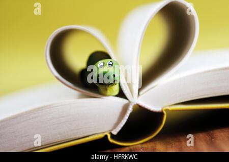 Buch, Bücherwurm herausschauen von Seiten, die so geformt, dass ein Herz bilden eröffnet - Stockfoto
