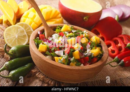 Lecker Salsa mit Mango, Pfeffer, Jalapeno, Koriander und Zwiebeln in einer Schüssel Nahaufnahme. horizontale - Stockfoto