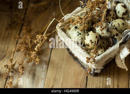 Wachtel-Eiern auf Stroh im Drahtkorb mit verstreuten Zweige des trockenen Feldblumen auf Scheune Holz, Ostern, Verwandten, - Stockfoto