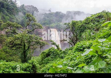 Versteckte Ekom Wasserfall tief in den tropischen Regen Wald von Kamerun, Afrika - Stockfoto