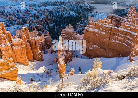 Morgensonne auf dem Schnee gehüllt Hoodoos in der Nähe von Sunset Point im Bryce-Canyon-Nationalpark, Utah - Stockfoto