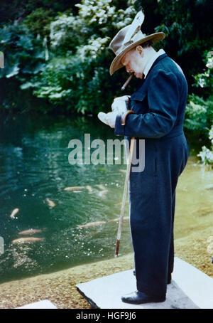 Farbfoto von Winston Churchill fressen die Goldfische in Chartwell - Stockfoto
