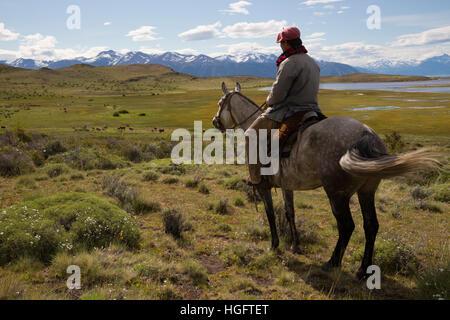 Gaucho auf Reiten mit Blick auf Estancia Alta Vista, El Calafate, Los Glaciares Nat Park, Anden, Patagonien, Argentinien
