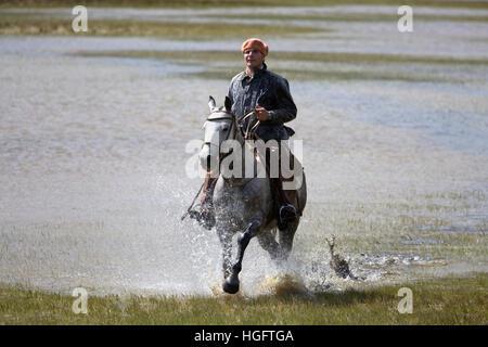 Gaucho auf Pferd im Galopp durch See bei Estancia Alta Vista, El Calafate, Parque Nacional Los Glaciares, Patagonien, Argentinien