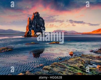 Riesige Basalt Stack Hvítserkur an der Ostküste der Halbinsel Vatnsnes. Bunte Sommer Sonnenaufgang im Nordwesten Islands