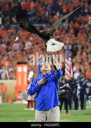 Tampa, Florida, USA. 9. Januar 2017. Ein Weißkopfseeadler erscheint zu Beginn des College Football Playoff nationalen - Stockfoto