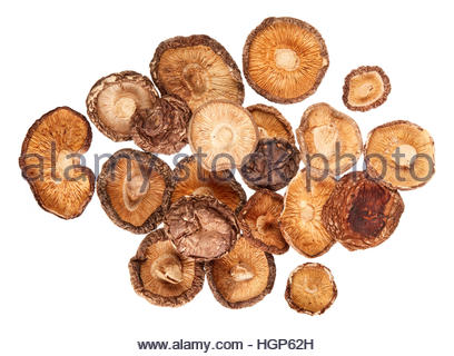 shiitake pilz stillleben stockfoto bild 61939529 alamy. Black Bedroom Furniture Sets. Home Design Ideas