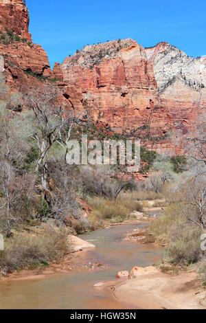 Virgin River im Frühjahr fließt unten vertikale Canyon Wände in Zion National Park in Utah - Stockfoto