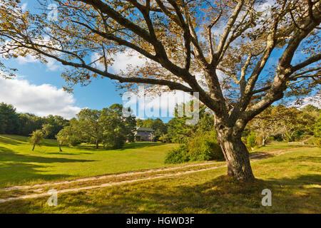 Die Eigenschaft am zukünftigen Sitz der Wildlands Vertrauen in Plymouth, Massachusetts. - Stockfoto