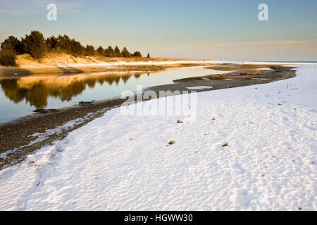 Winter auf Cape Cod Bay an die wechselnden viel Preserve in Plymouth, Massachusetts.  Wildlands Vertrauen der südöstlichen - Stockfoto