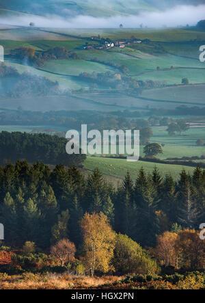 Herbstfärbung nr Webbers Post mit Nebel hängt über den Holnicote Estate, Exmoor National Park, Somerset, England, - Stockfoto