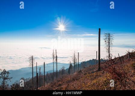 Hintergrundbeleuchtung, gegen die Sonne. Panorama mit Wolken und niedrigen Nebel gegen die Sonne, gesehen vom Campo - Stockfoto