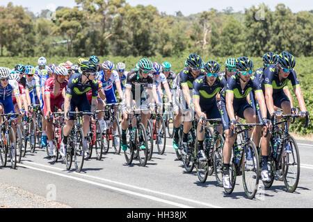 Adelaide, Australien. 17. Januar 2017. Radfahrer aus dem Movistar Team (MOV) in Phase 1 der Santos Tour Down bis - Stockfoto
