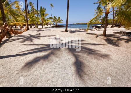 Schatten der Palmen am Sandstrand in Hawaii - Stockfoto