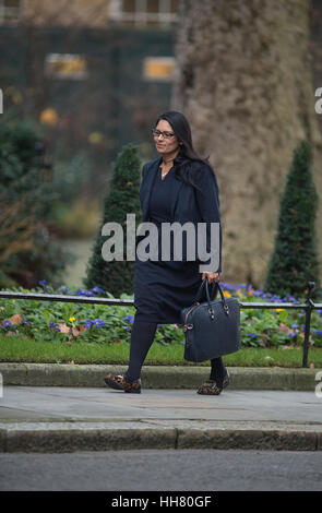Downing Street, London, UK. 17. Januar 2017. priti Patel, Minister für internationale Entwicklung, kommt für die - Stockfoto