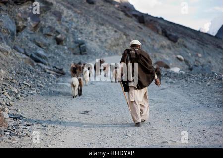 Ein Hirte in der Nähe von Gilgit, Pakistan - Stockfoto