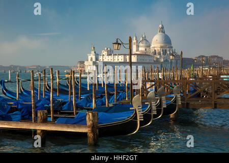 Schaukelnden Gondeln unter Santa Maria della Salute, Venedig, Veneto, Italien