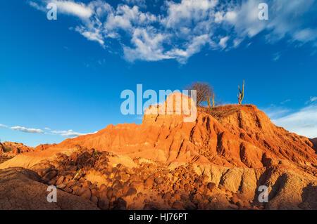 Wüstenlandschaft, trocken, vertrocknet, öde, Kolumbien, Landschaft, Landschaft, - Stockfoto