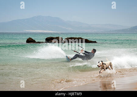 Man Kitesurfen und Hund am Strand Los Lances, Tarifa, Cádiz, Andalusien, Spanien - Stockfoto