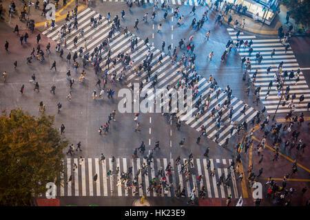 Stadtbild, Shibuya jagt Kousaten Kreuzung in Hachiko Square, Tokio, Japan - Stockfoto