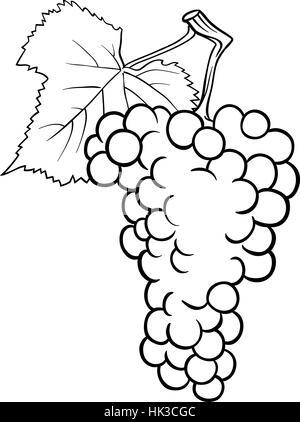 Schwarz / Weiß Cartoon Illustration Haufen von Trauben oder ...