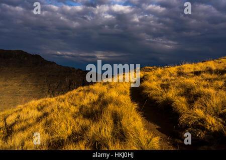 Abendsonne, betont Kiger Gorge Steens Mountain; Frenchglen, Oregon, Vereinigte Staaten von Amerika - Stockfoto