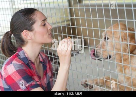 stets gut gelaunte Frau gibt Hund Süßigkeiten durch den Zaun - Stockfoto