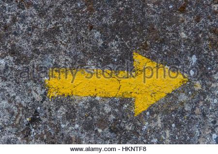 Zeichen Der Jakobsweg Route Auf Rinde Gemalt Stockfoto