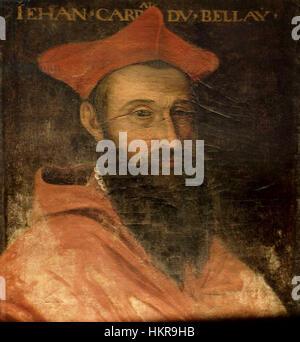 Kardinal Jean Du Bellay (1492-1560) - Stockfoto