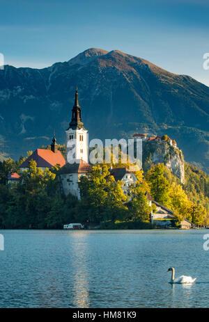 Morgensonne über St. Marys Church von der Annahme, Bleder See, obere Krain, Slowenien - Stockfoto