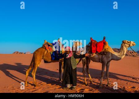 Beduinen-Mann und Kamele, Arabische Wüste, Wadi Rum, Jordanien. - Stockfoto