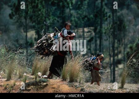 Frau mit Brennholz mit einem Kind auf ihre Schultern, San Cristobal de Las Casas, Chiapas, Mexiko. - Stockfoto