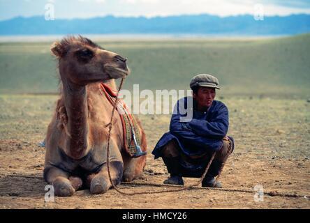 Mann hocken neben einem Kamel, Wüste Gobi, Mongolei. - Stockfoto
