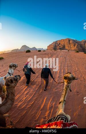 Beduinen Männer und Kamele, Arabische Wüste, Wadi Rum, Jordanien. - Stockfoto