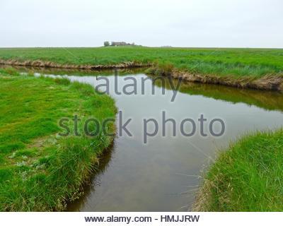 Landschaft auf Hallig Langeneß mit Tideway, Wattenmeer, Nordsee, Schleswig-Holstein, Deutschland, Europa. - Stockfoto
