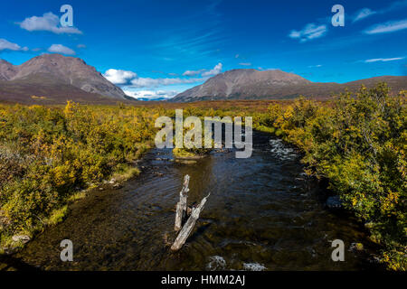 26. August 2016 - Running Creek in Central Alaska Range - Route 8, Denali Highway, Alaska, ein Feldweg bietet einen - Stockfoto