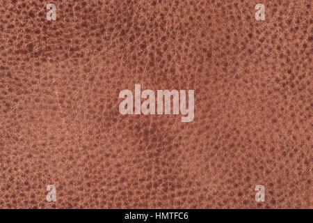 Leder, Haut, Textur, Hintergrund - Stockfoto