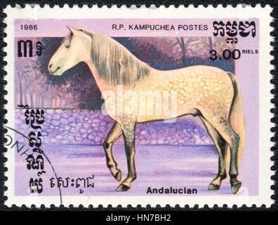 Eine Briefmarke gedruckt in R.P. Kambodscha zeigt ein andalusischen Pferd, Rasse der Pferde-Serie, ca. 1986 - Stockfoto