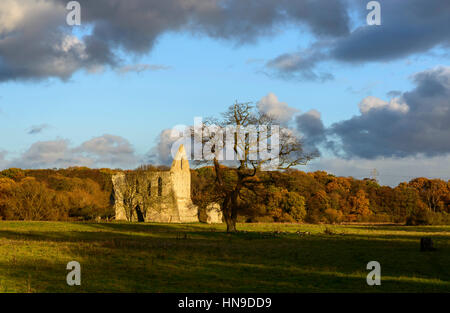 Die Ruinen von Newark Priory, in der Nähe von Ripley, Surrey, England - Stockfoto