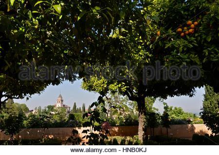 Die Alhambra - Stockfoto